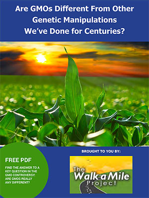 Are GMOs Different From Other Genetic Manipulations We've Done For Centuries?